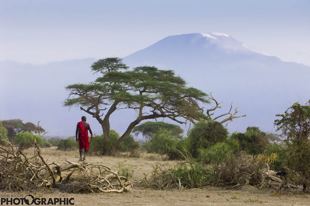 Maasai mountain | 10 of 10 prints available | from R3500