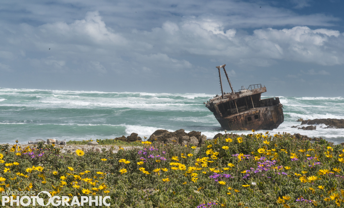 Wrecked | 10 of 10 prints available | from R3500